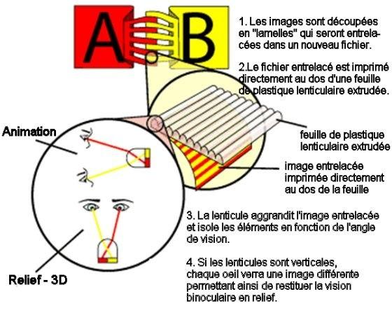 schema lenticulaire